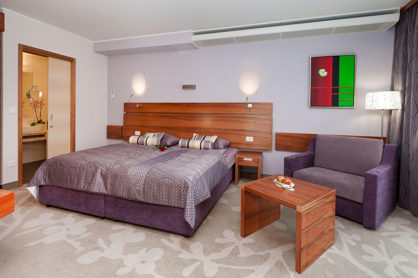 hotel atrij superior terme zre e. Black Bedroom Furniture Sets. Home Design Ideas
